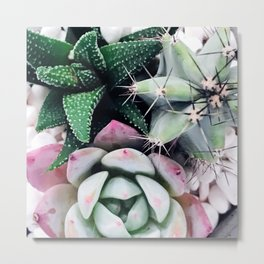 Romantic Succulent Garden in Exotic Greens and Pink Metal Print