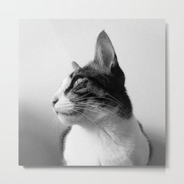 Thats my Cat !! 05 Metal Print