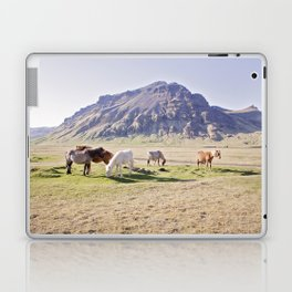 Colorful Horse Photograph Laptop & iPad Skin