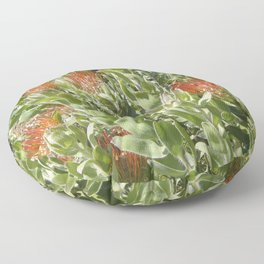 Proteas Floor Pillow