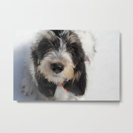 GBGV Puppy with Attitude Metal Print