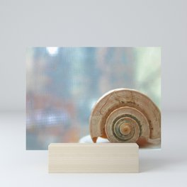 Shell Up Close and Personal Mini Art Print