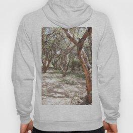 Sacsayhuaman trees Hoody