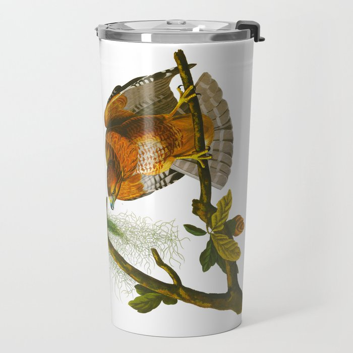Red-shouldered Hawk Travel Mug