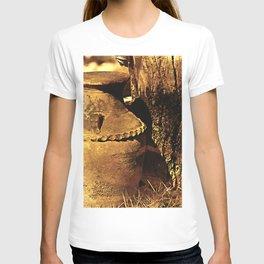 Ancient Jar T-shirt