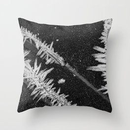 Icy Days NO2 Throw Pillow