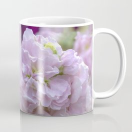 Pink Stocks Coffee Mug