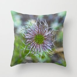 Prairie smoke wildflower Throw Pillow