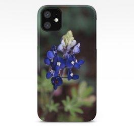 Texas Bluebonnet - Lupinus texensis iPhone Case