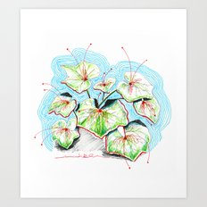 Plenty of Plants Art Print