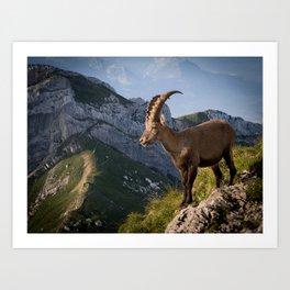 Capricorn in the Alps Art Print
