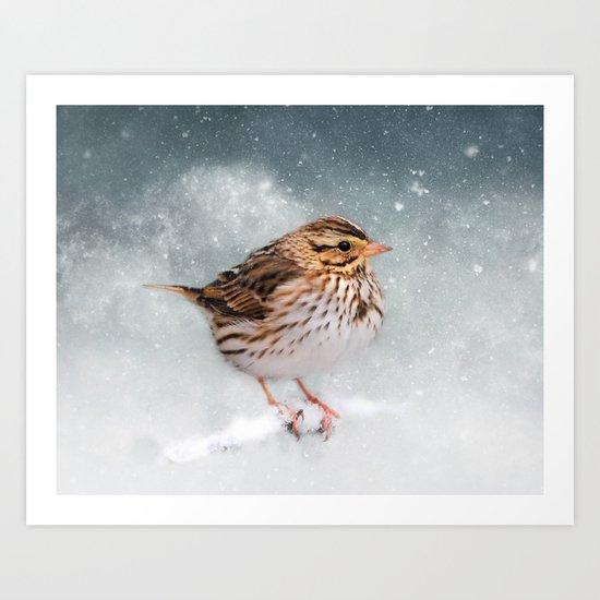 Snow Sparrow Art Print