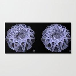 Basket of Hyperbolae - Stereogram Canvas Print