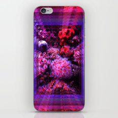 8Ft under the sea iPhone & iPod Skin
