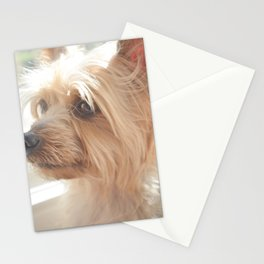 One Sweet Love Stationery Cards
