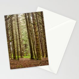 Old Growth Forest Photography Print Stationery Cards