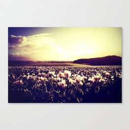 There are more things in heaven and earth Horatio... Canvas Print
