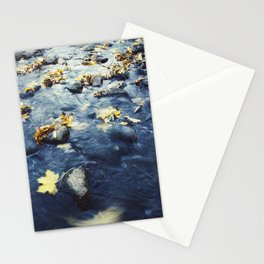 Autumn Leaves, Color Film Photo, Analog Stationery Cards