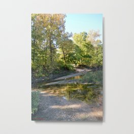 Where Canoes and Raccoons Go Series, No. 22 Metal Print