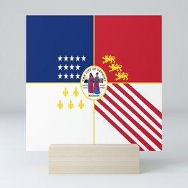flag of detroit Mini Art Print