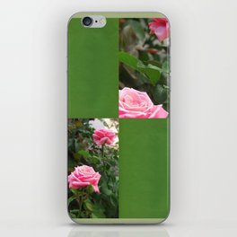 Pink Roses in Anzures 5  Blank Q5F0 iPhone Skin