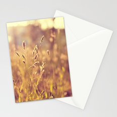Warm Summer Eve Stationery Cards