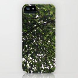 Umbrella Tree iPhone Case