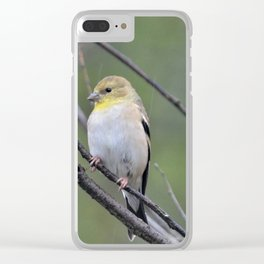 yellow finch Clear iPhone Case