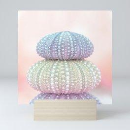 Sea Urchin Shells Mini Art Print