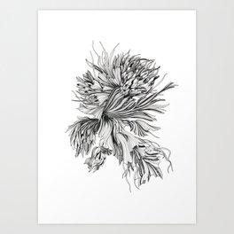 "Floral Series ""Underwater Peony"", linear drawing Art Print"