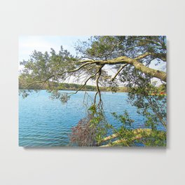 Serenity by the Lake Metal Print