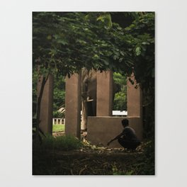 elephant nature park 3 Canvas Print