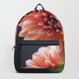 The Eye of Dahlia Backpack