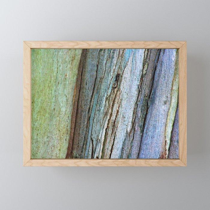 Colorful Eucalyptus Bark Framed Mini Art Print