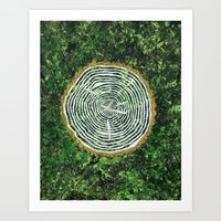 tree rings Art Prints featuring Tree Rings by Zoë Miller