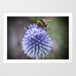 Save Our Bees Art Print