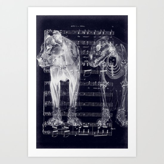 Roar X-Ray Art Print