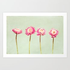Flowers Two by Two Art Print