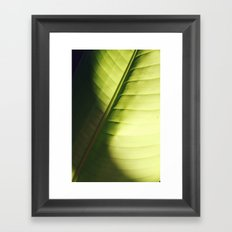 leaf macro Framed Art Print