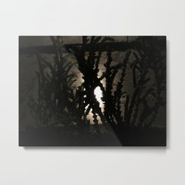 Nighttime in the Garden, 1 Metal Print
