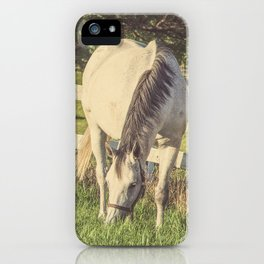 Mare and Foal // Horses iPhone Case