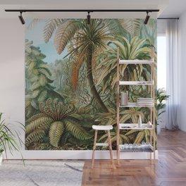 Ernst Haeckel- Vintage Tropical Rainforest Wall Mural