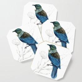 Tui, New Zealand native bird Coaster