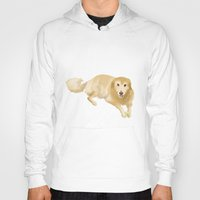 golden retriever Hoodies featuring Golden Retriever by Bark Point Studio