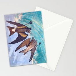Fork-Tailed Storm Petrel Bird Stationery Cards