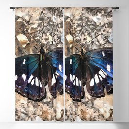 Southern White Admiral On Stone Butterfly Portrait Blackout Curtain