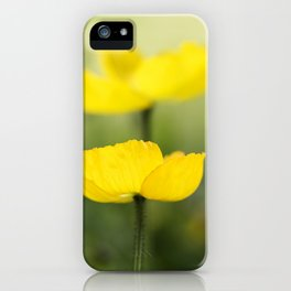 Iceland Poppies iPhone Case