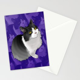 Spider Man the Cat Stationery Cards