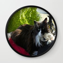 The Feline Queen Reposes (Gracie Queen of Chicago Collection) Wall Clock