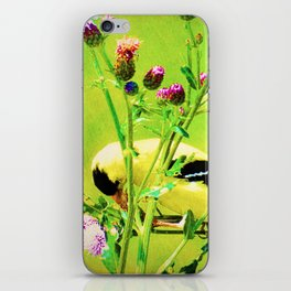 Goldfinch Yellow Bird Purple Flowers A101 iPhone Skin